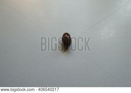 Single Glossy Brown Softgel Capsule Of Vitamin D3