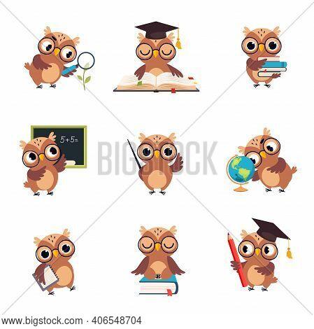 Wise Brown Owl In Various Actions Set, Cute Bird Teacher Cartoon Character Teaching At School Vector