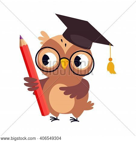 Wise Brown Owl In Graduation Cap, Cute Bird Teacher Cartoon Character With Pencil Vector Illustratio