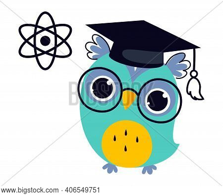Wise Owl In Graduation Cap, Cute Bird Teacher Cartoon Character Teaching Physics At School Vector Il