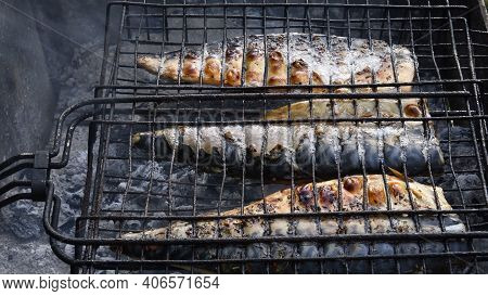 Delicious Grilled Mackerel Fish Inside Grill Grid On Charcoal Grill Brazier. Local Sea Fish Preparat