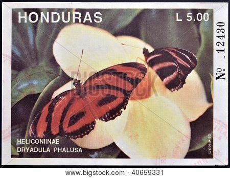 HONDURAS - CIRCA 1992: A stamp printed in Honduras shows butterfly Heliconiinae Dryadula Phalusa