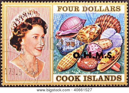 Stamp printed in Cook Islands shows Portrait of Queen Elizabeth II with collection of shells