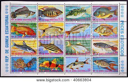 EQUATORIAL GUINEA - CIRCA 1974: A set stamps printed in Guinea Ecuatorial shows exotic fish circa 19