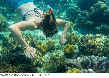 Woman Swimming In Blue Sea. Snorkel In Coral Reef Of Tropical Sea. Woman In Snorkeling Mask Underwat