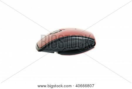 Portable Wireless Mouse (l)