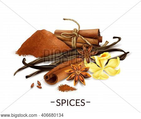 Spices Realistic Composition With Vanilla Flower And Dried Beans Star Anise Cinnamon Powder And Stic