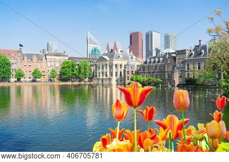 City Center Of Den Haag - Mauritshuis With Reflections In Pond, Netherlands And Flowers