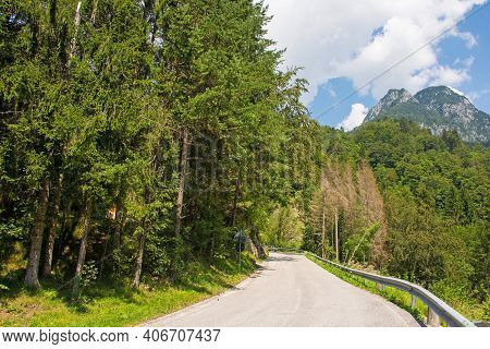 The Summer Landscape Near The Sella Cereschiatis Mountain Pass In Udine Province, Friuli-venezia Giu