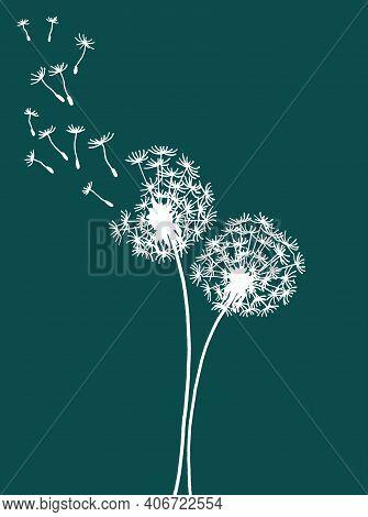 Vector Illustration Of Two Dandelions Doodles On Green Background. Eps10 For Logos Or Labels, Postca