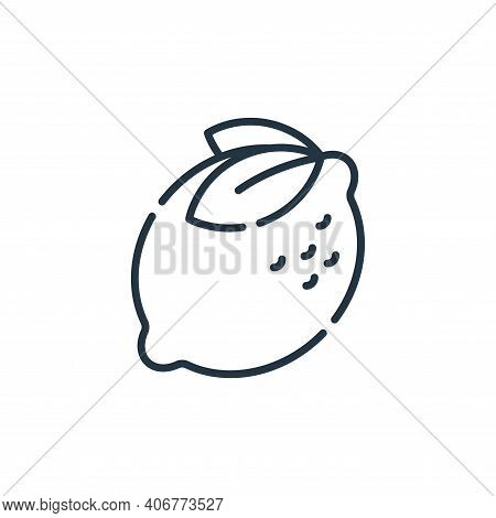 lemon icon isolated on white background from allergies collection. lemon icon thin line outline line