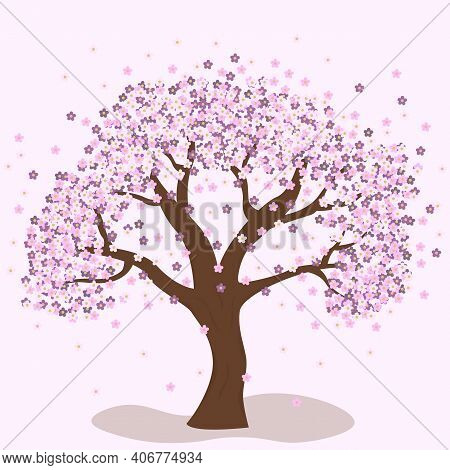 Spring Cherry Tree. Apricots, Plum, Cherry. Spring Flowers. Flourishing Tree.