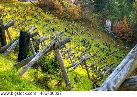 Avalanche Barriers In The Zurich Oberland, Hillside Construction