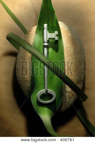 Eco Key