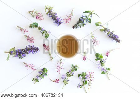 Herbal Tea From Medicinal Herbs In A Cup Isolated On White Background.a Set Of Herbs From Folk Medic