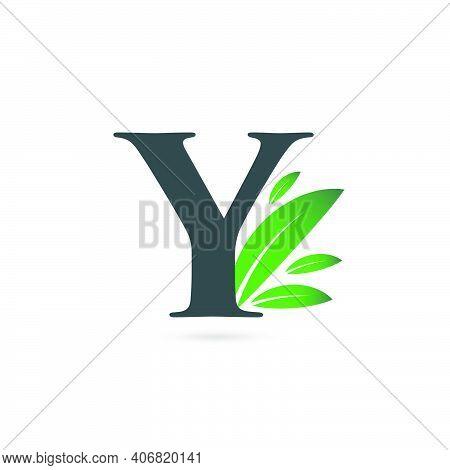 Initial Letter Y Leaf Logo, Alphabet Y Vector Illustration