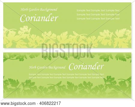 Seamless Vector Background Illustration Set With Coriander Silhouette. Horizontally Repeatable.