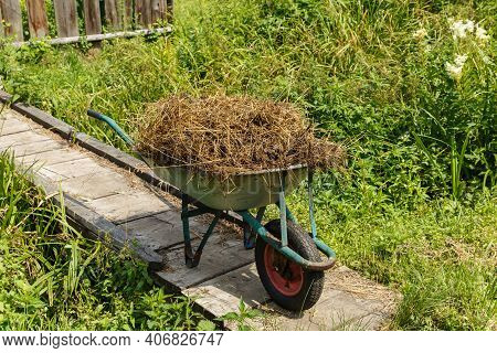 Garden Cart With Natural Cow Manure. The Cart Stands On A Wooden Bridge.