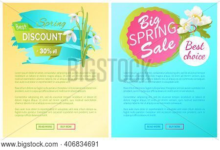 Spring Big Sale Discount New Offer Premium Posters Set With Springtime Snowdrop And Anemone Flowers