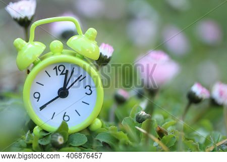 Spring Time. Green Alarm Clock In Chamomile Flowers. Spring Garden Work.floriculture And Horticultur