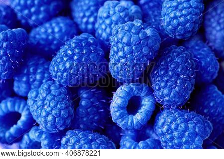 Fresh Sweet Blue Raspberry Texture Pattern Background. Raspberry Fruit Pile Background. Selection Of