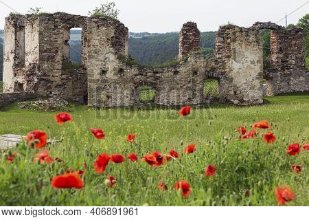 Ruined Medieval Castle Pidzamochok Among Red Poppies And Green Grass. Buchach Region, Ternopil Oblas