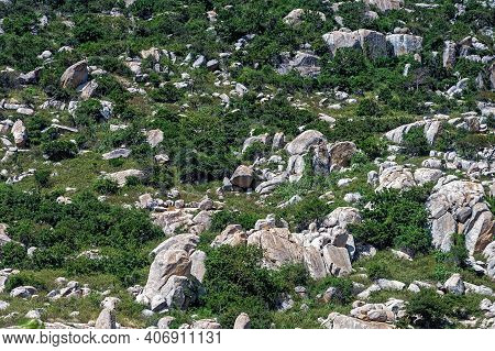 Part Of A Mountain Where Vegetation Is Mixed With Protruding Rock