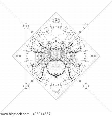 Vector Illustration With Hand Drawn Spider Tarantula And Sacred Geometric Symbol On White Background