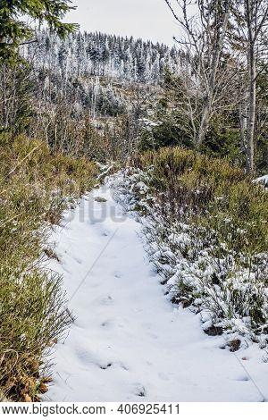 Footpath In Low Tatras Mountains, Slovak Republic. Natural Winter Scene. Hiking Theme.