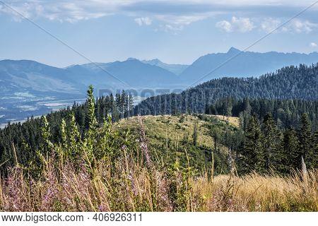 Krivan Peak And Liptov Basin From Low Tatras, Slovak Republic. Hiking Theme. Seasonal Natural Scene.