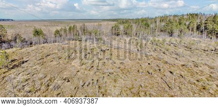 aerial view of northern peat swamp under sky with clowds