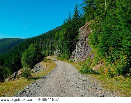 Summer Drive In The Cascades - A View Along Fr2207 In The Cascade Range - Near Detroit, Or