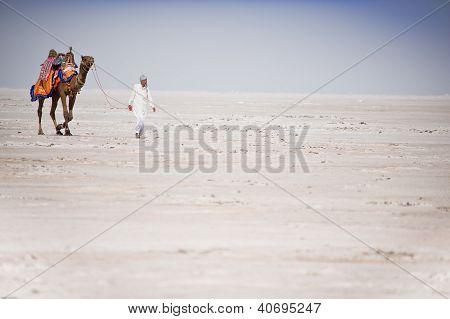 indische Nomaden in der Wüste mit Kamel