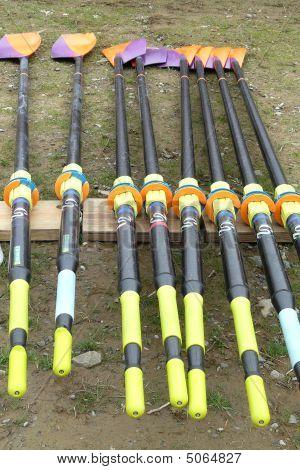 Crew Rowing Oars