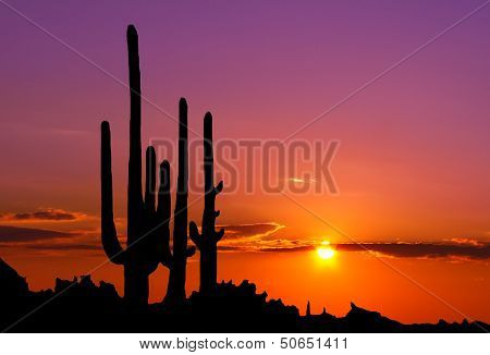 Sunset In Mexican Canyon