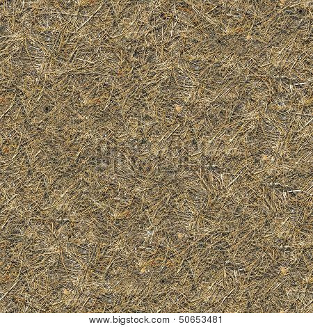 Seamless Texture of  Withered Grass.