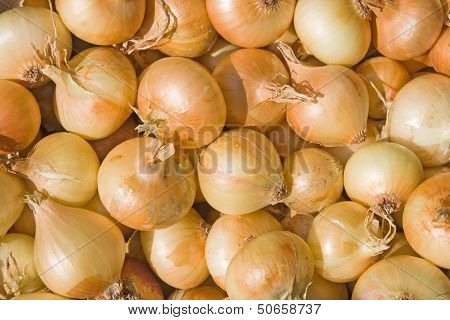 A Pile Of Bulb Onions On A Counter
