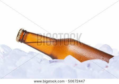 The Cooler Beer