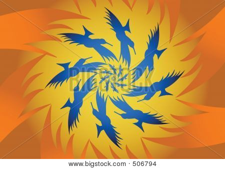 Spiralling Birds