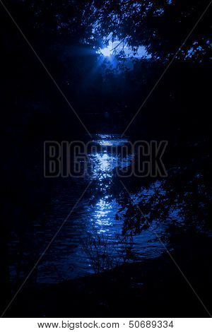 Hiding Nearby A Lake In Night