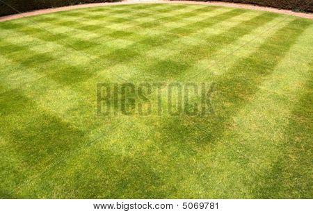 Lawn Mowed In A Pattern