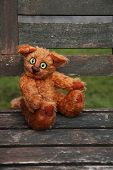 Stuffed Ginger Cat sitting on old wooden garden chaiir shallow DOF Author's work with property release. poster
