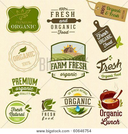 Organic food - Illustration