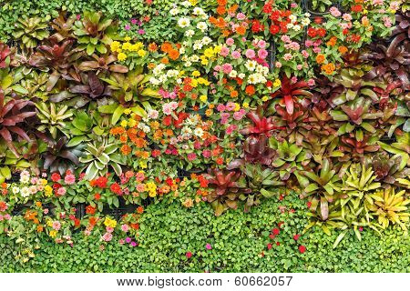 Abstract Nature Background, Wall Garden