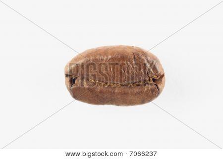 Roasted Coffee Bean Over White.