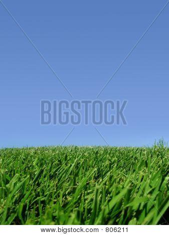 蓝色的天空和草地的背景