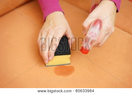 Professional Cleaner Is Cleaning Stain On Sofa With Spray Bottle And Sponge