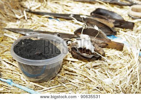 Coal Bowl For Sheep Skin Wounded