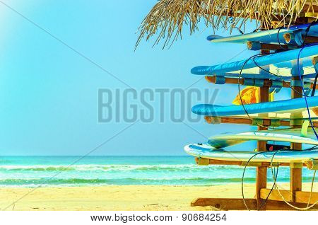 Exotic beach with colorful surfboards, Sri Lanka