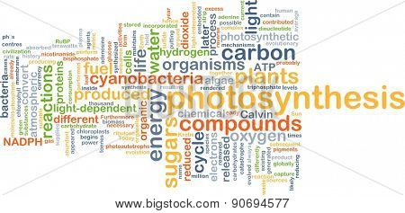 Background concept wordcloud illustration of photosynthesis